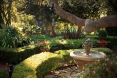 OMI-Garden1-15
