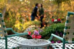 OMI-Garden2-09-Edit