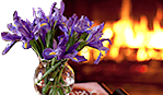 Flowers near the fireplace