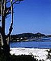 Monterey Outdoor Activities