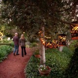 Wedding Venues in Monterey CA