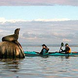 monterey bed and breakfast kayak