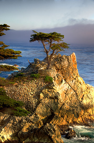 beach getaways perfected at our Monterey bed and breakfast