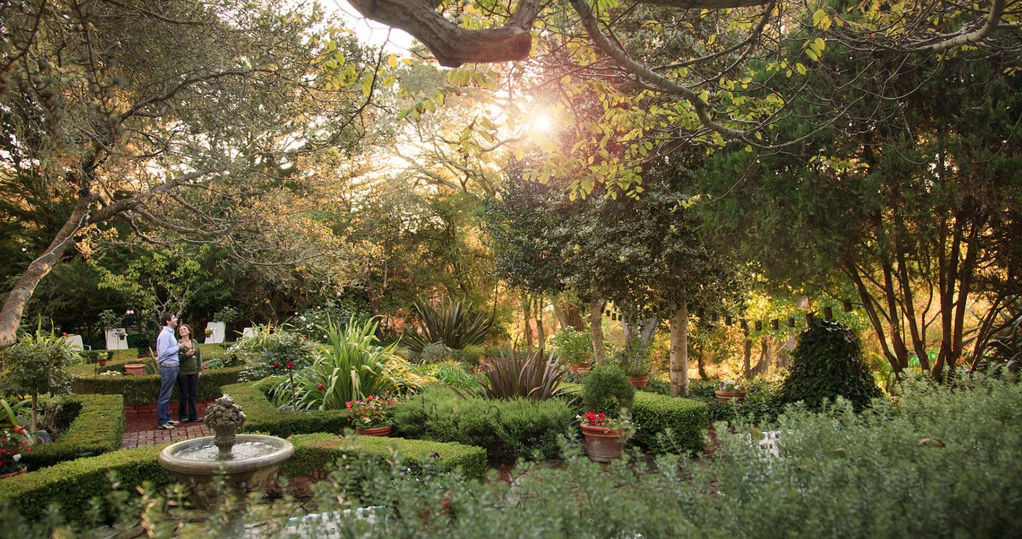 Modern Weather Garden Grove 92843 Gift - Brown Nature Garden ...