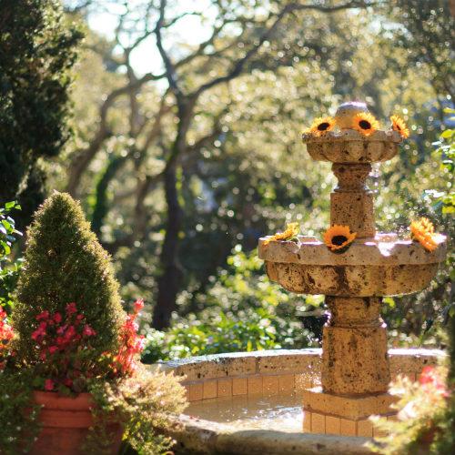 Spring at Old Monterey Inn