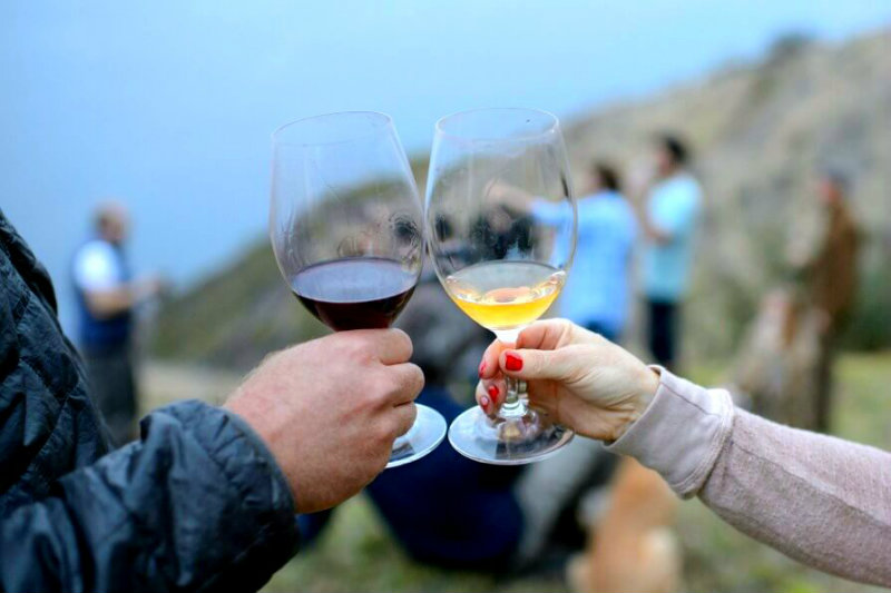 Cheers to the top Monterey Wineries!