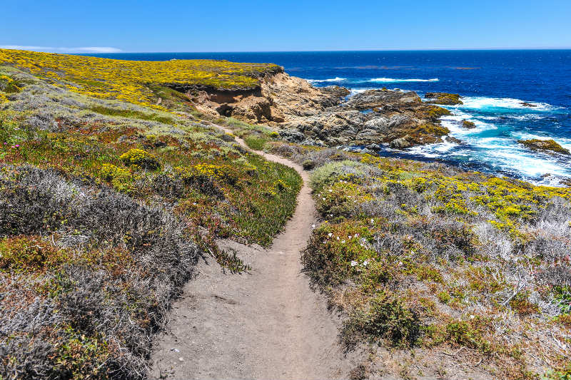 Garrapata State Park - Top Hiking Near Monterey CA