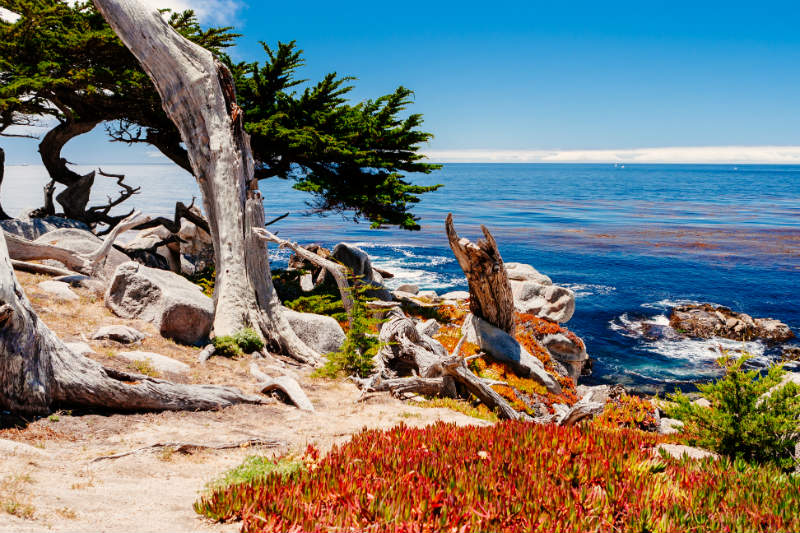 Best Hiking Near Monterey CA